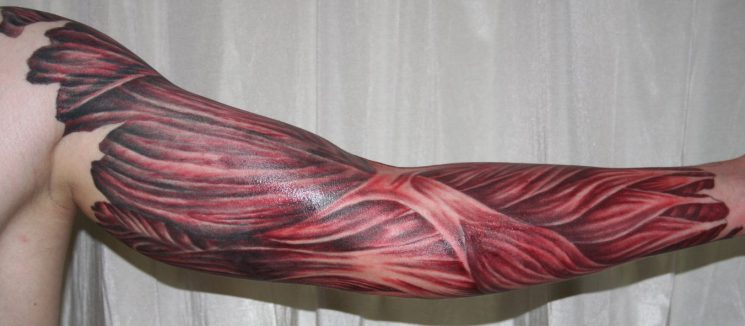 3D Wolf Tattoo On Muscles