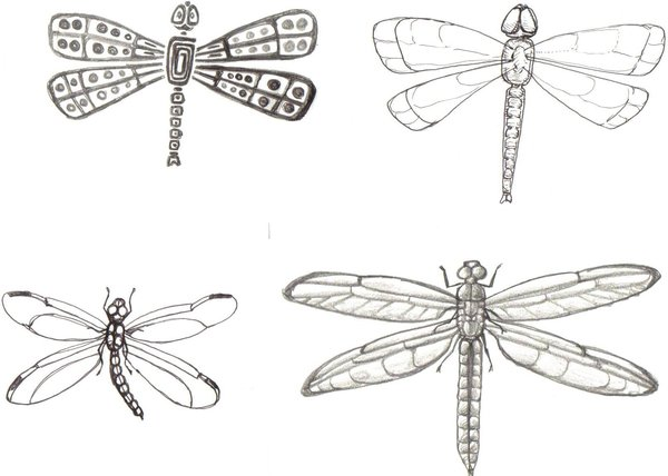 4 Dragonfly Tattoo Samples