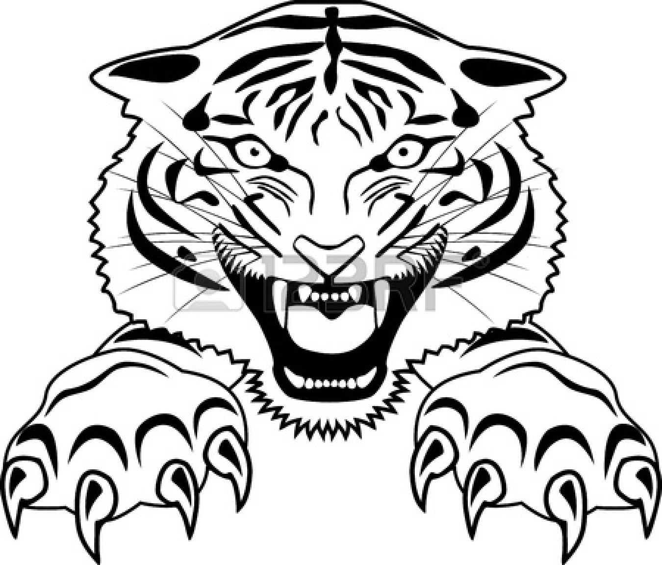 Easy tiger face sketch
