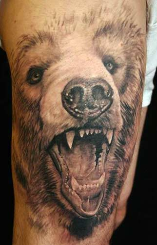 Awesome Koala Bear Tattoo For Girls
