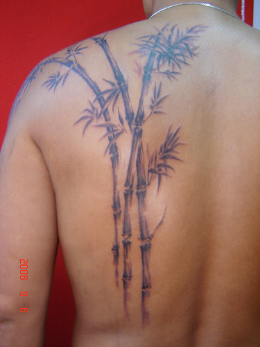 Bamboo Tree Tattoo on Back