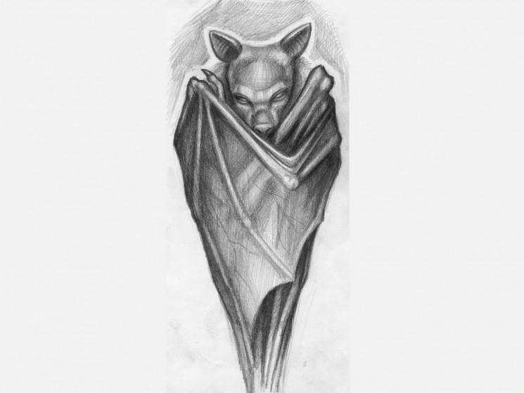 Bat Covered By The Wings Tattoo Design
