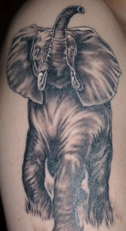 Beautiful African Elephant Tattoo On Arm
