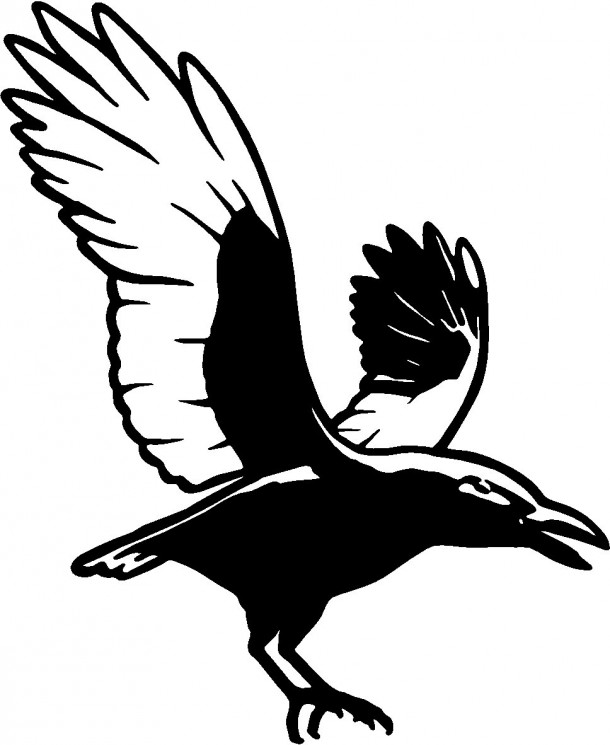 Black And White Crow Tattoo Model