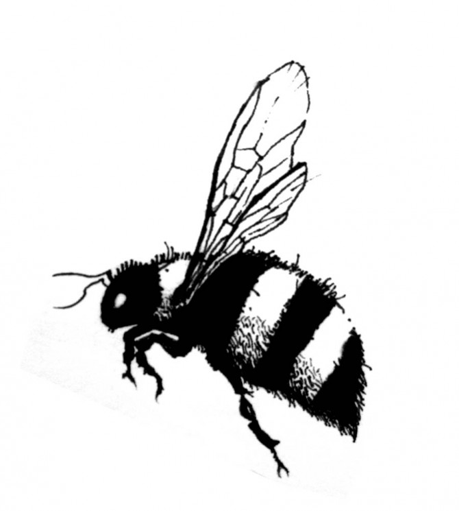 Black Bee Tattoo Designs