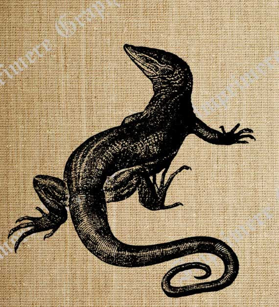 Black Lizard Tattoo Poster