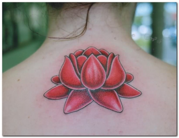 Butterfly Cat And Lotus Tattoo Designs On Back Body