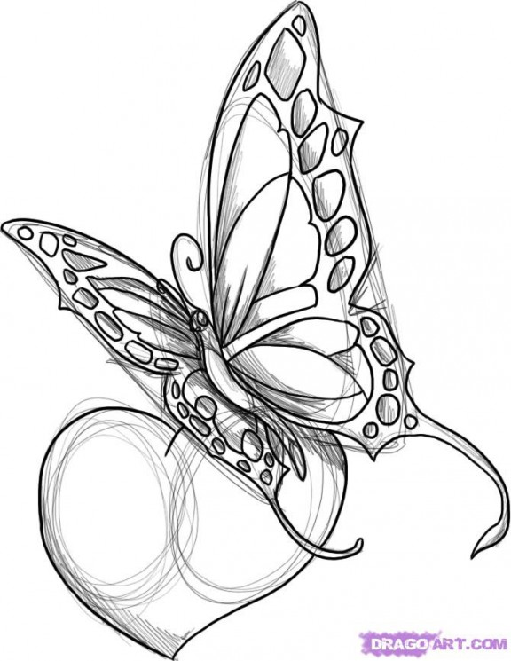 Butterfly Tattoo With Stars