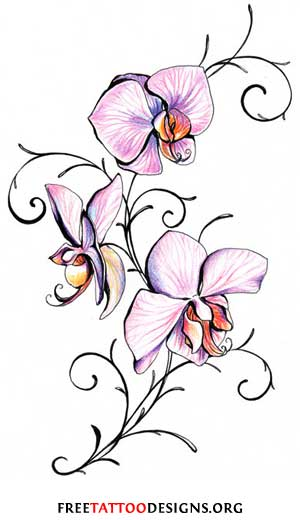 Butterly And Orchid Flower Tattoos On Leg