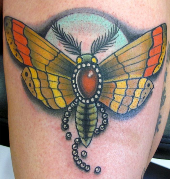 Cockroach Insect Tattoo On Forearm