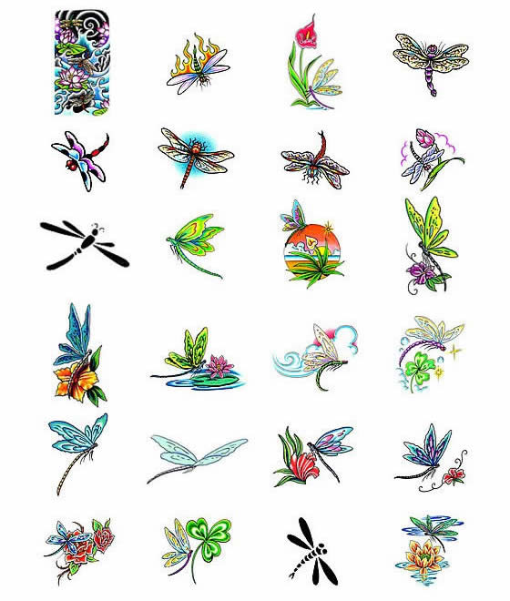 Colorful dragonfly clipart