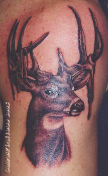 Cool Deer Tattoo Style
