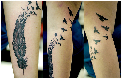 Cool Feather Tattoo Design