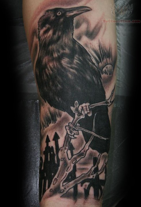 Crow Sitting On Branch Tattoo On Biceps