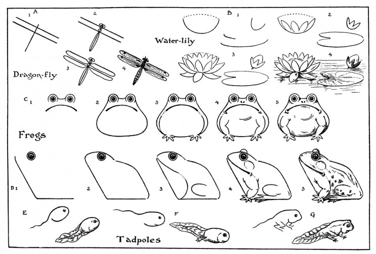 Cute Frog On Lily Pad Tattoo Design