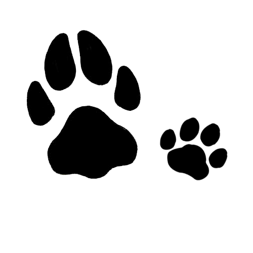 Dog And Cat Paw Prints Tattoos