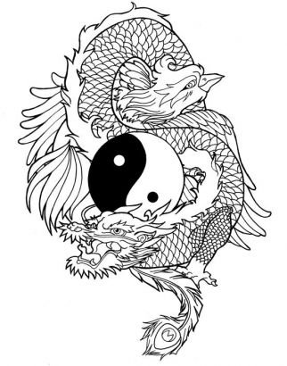 dragon tiger yin yang tattoo for men in 2017 real photo pictures images and sketches tattoo. Black Bedroom Furniture Sets. Home Design Ideas