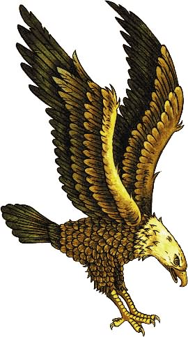 Eagle Tattoo Sample
