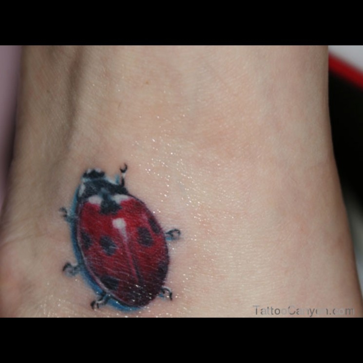 Exotic Ladybug Tattoo Design