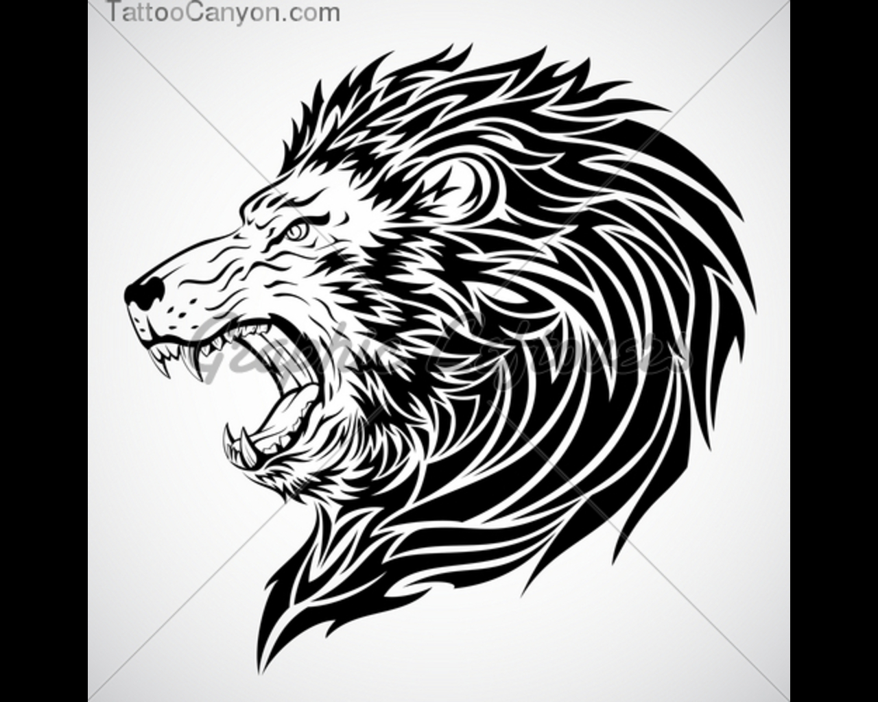 fierce lion head tattoo design photo 1 2017 real photo pictures images and sketches. Black Bedroom Furniture Sets. Home Design Ideas