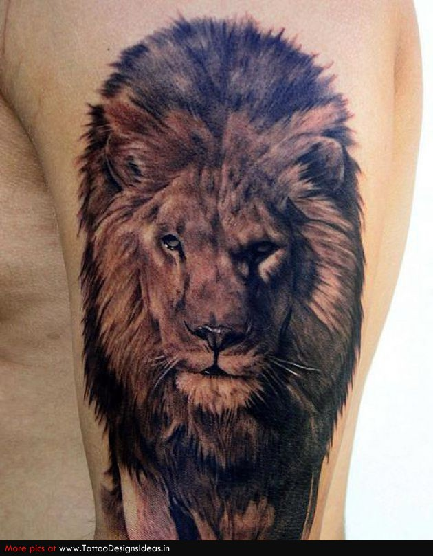 fierce lion tattoo design in 2017 real photo pictures images and sketches tattoo collections. Black Bedroom Furniture Sets. Home Design Ideas