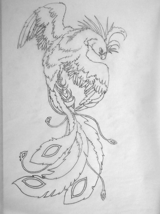 Flaming Phoenix With Girl Tattoo Sketch