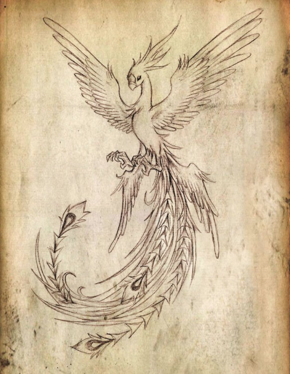 Flying Phoenix On Fire Tattoo Poster