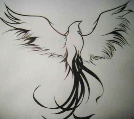 Fresh Black Outline Phoenix Tattoo Design