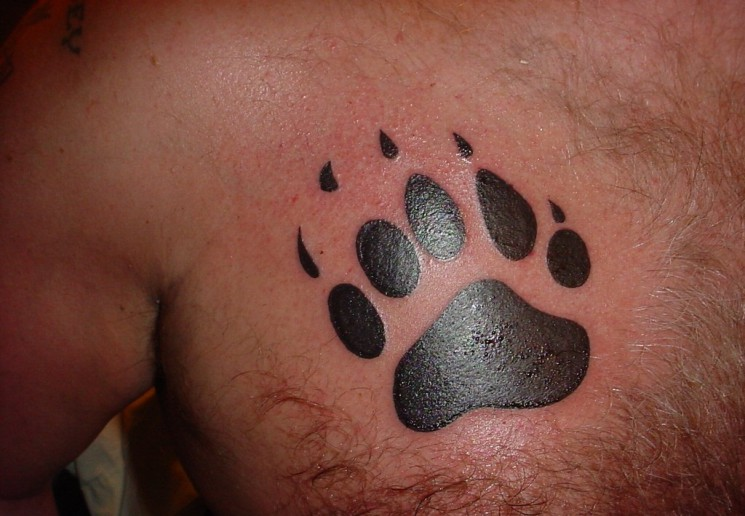 Fresh Ink Bear Paws Tattoos On Chest