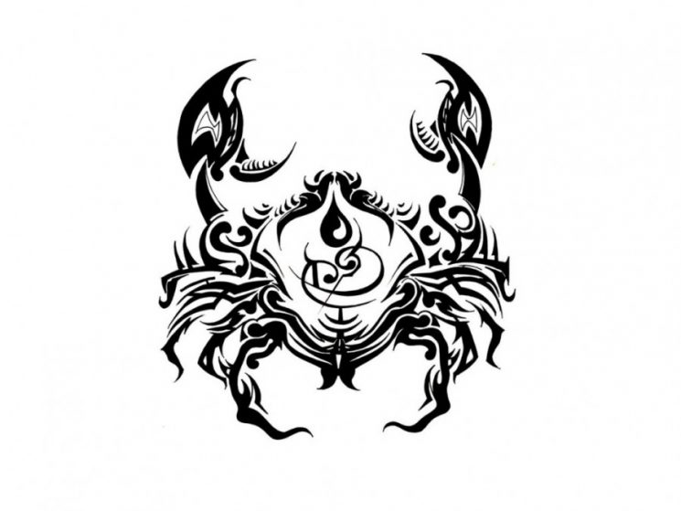Sexy Lotus Peony Pisces Sign Tattoos On Back