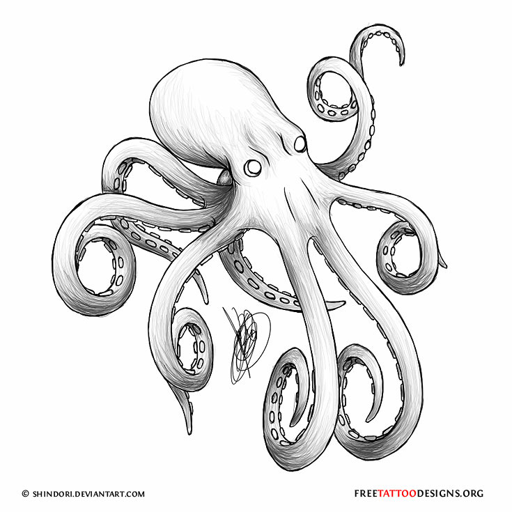 Grey Octopus Tattoo Design