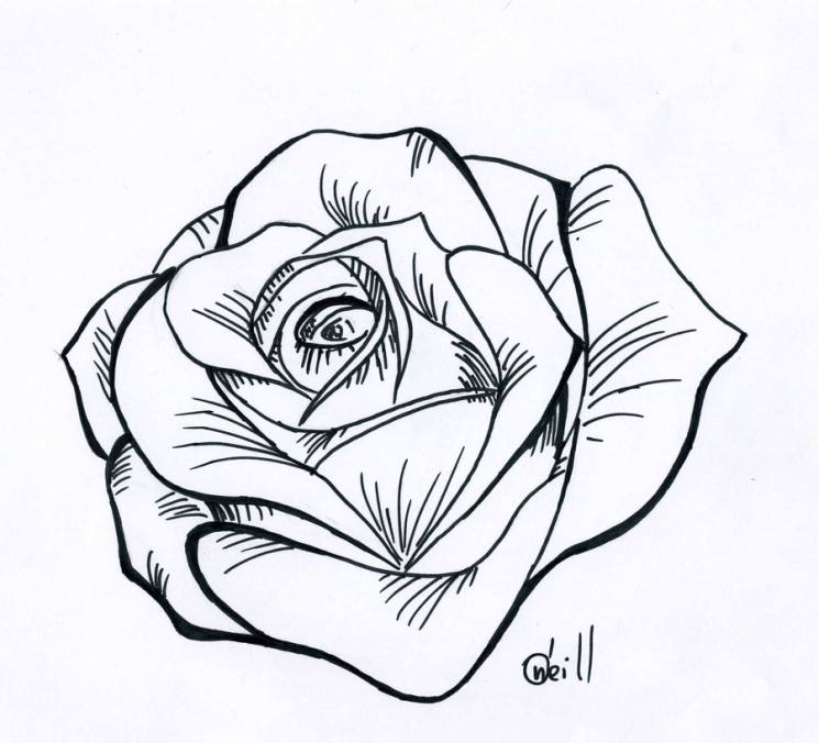 Grey Roses Tattoos Stencil
