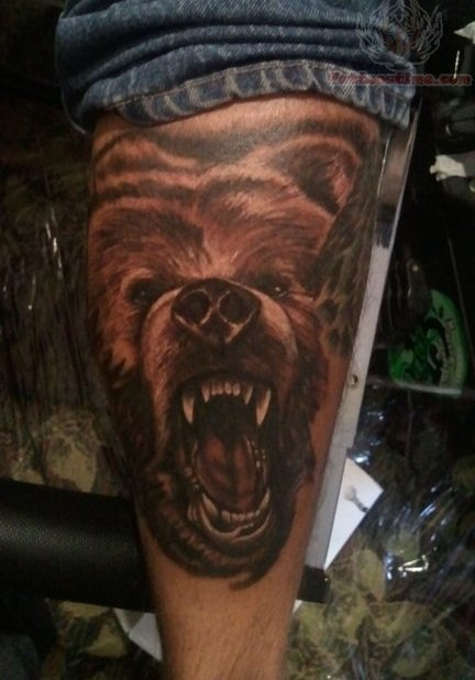 Grizzly Bear Face Tattoo For Chest