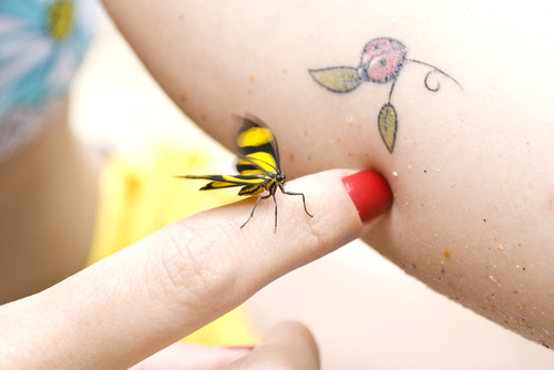 Insect Fly n Ladybug Tattoo Design