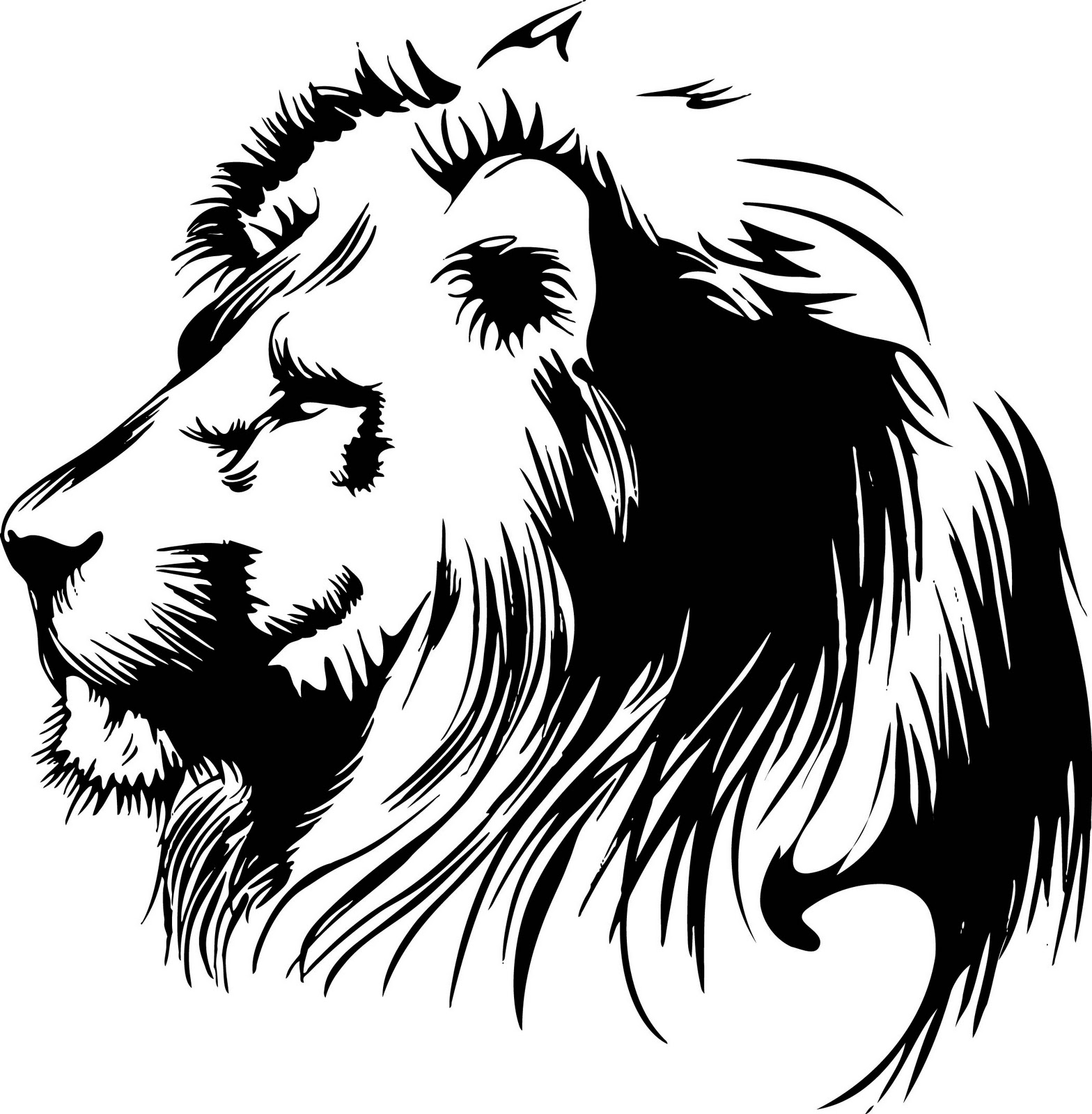 Lion Head Tattoo Sketch Photo 4 2017 Real Photo Pictures Images
