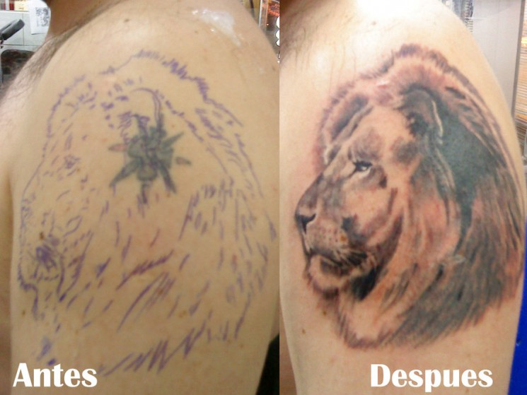 Lion Tattoo Cover Up