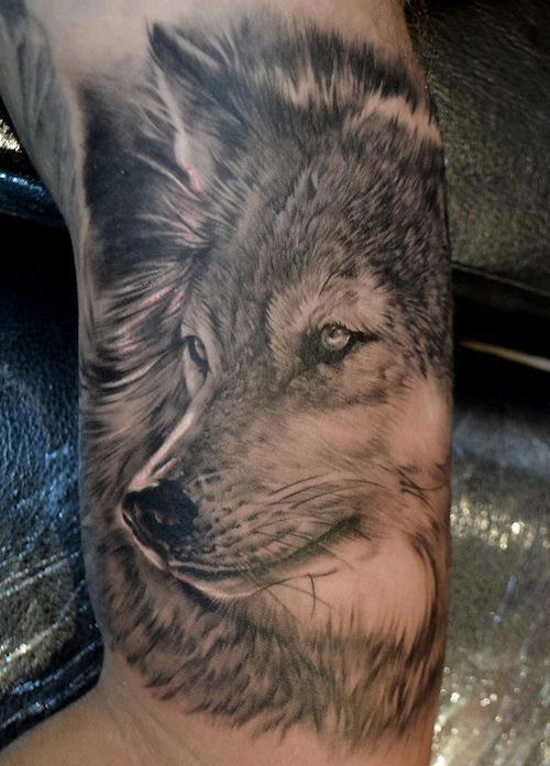 Lone Wolf Among High Mountains Tattoo On Back