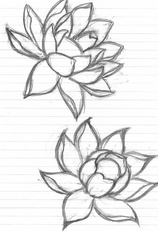 Lotus Flower n Butterfly Tattoo On Back For Girls