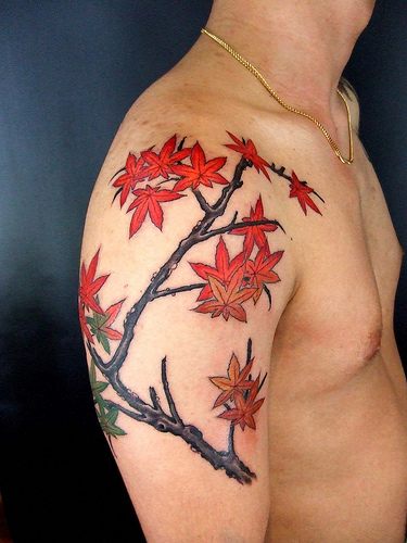 Maple Leaves Tattoo On Shoulder For Men