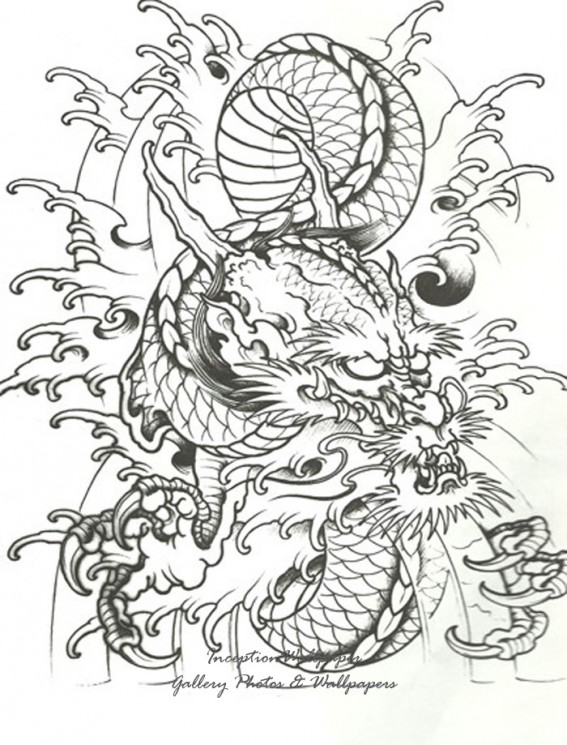 More Tribal Tattoo Designs On White Background