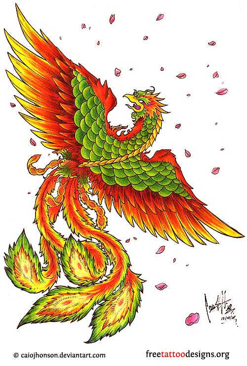 New Many Color Phoenix Tattoo Flash