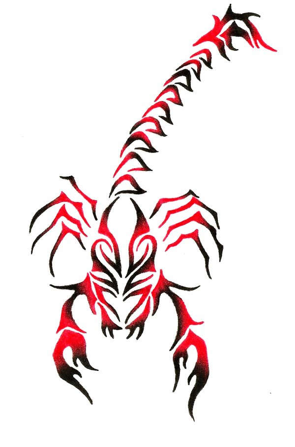 New Tribal 3d Scorpion Tattoo In 2017 Real Photo Pictures Images