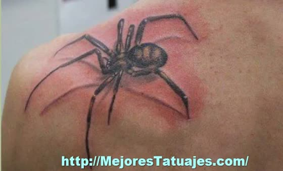 Once Again Traditional Spider Tattoo