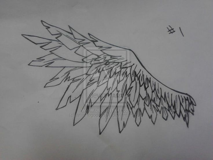 Open Wings Crow Tattoo Design