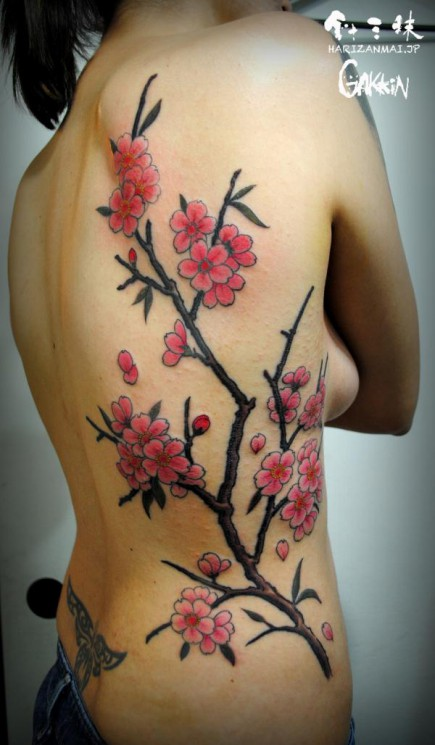 Owl On Blossoms Branch Tattoo On Side