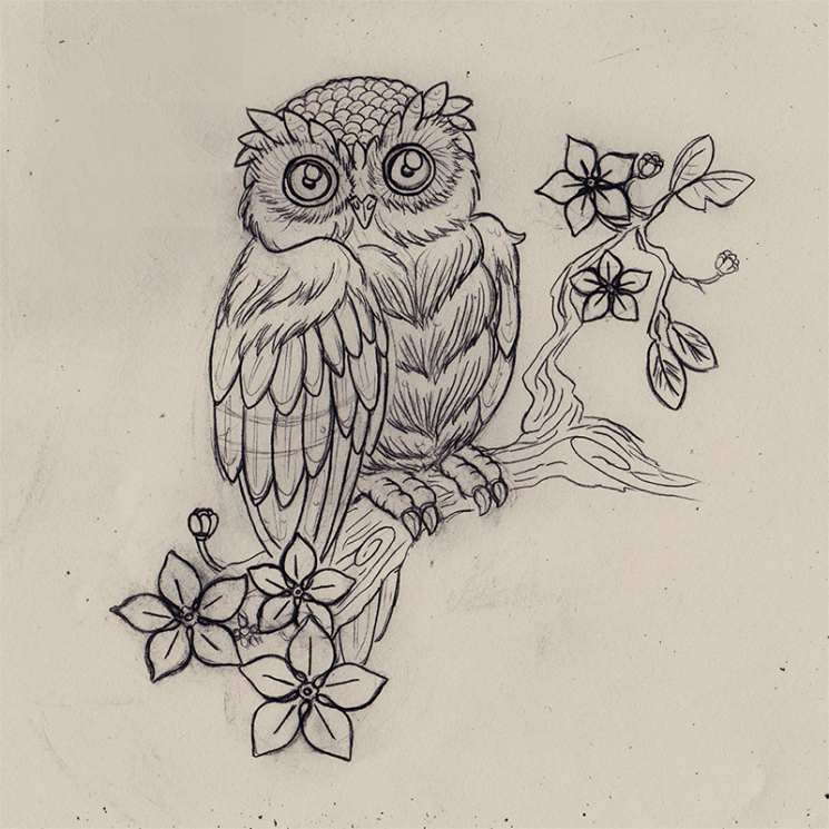 Owl On Branch Tattoo Sketch