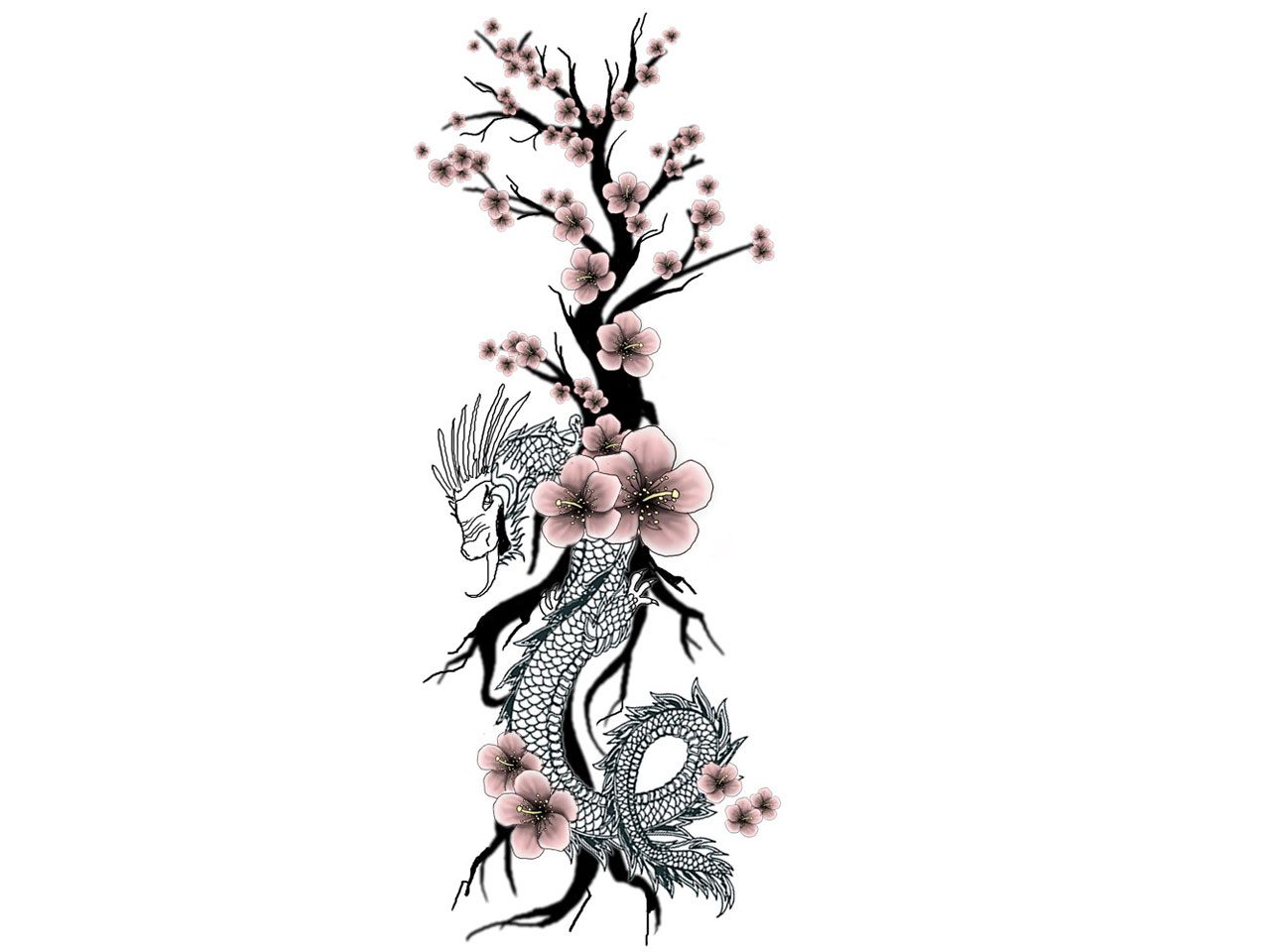 Panda On Cherry Blossom Tree Tattoo Design Photo - 3 2017: Real ...