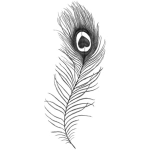 Peacock Feather n Infinity Symbol Tattoo Design