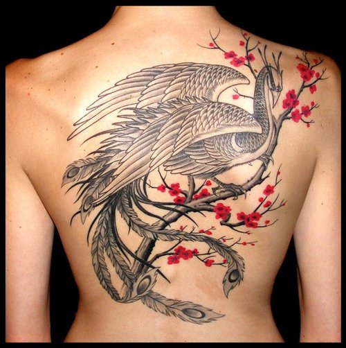 Phoenix On Cherry Blossom Branch Tattoo On Back