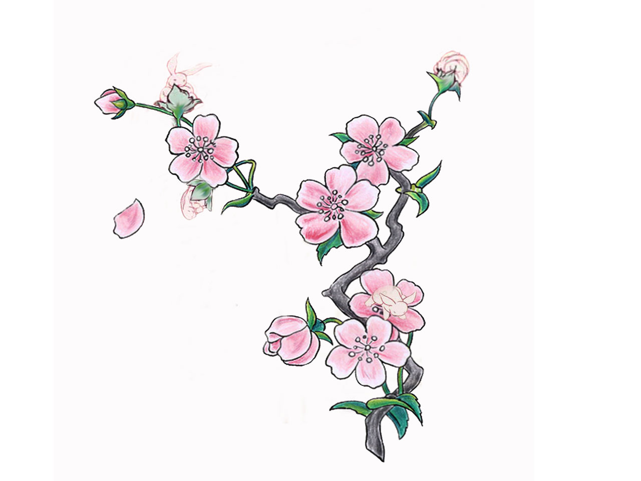 Pink cherry blossom tattoo on foot in 2017 real photo pictures all images to pink cherry blossom tattoo on foot urmus Gallery